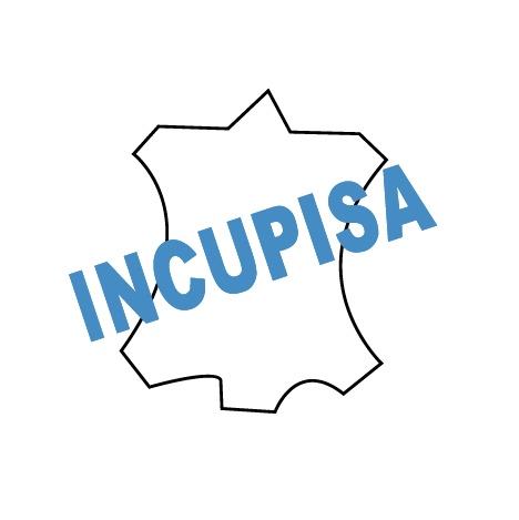 INCUPISA Logo