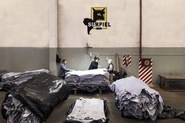 Surpiel Split Group Company 1