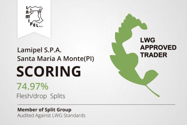 Lamipel SpA Santa Maria a Monte LWG Audited